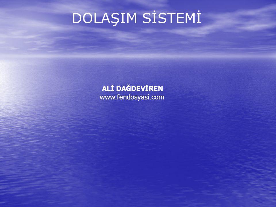 DOLAŞIM SİSTEMİ ALİ DAĞDEVİREN www.fendosyasi.com