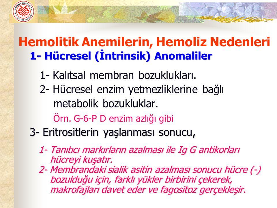 Hemolitik Anemilerin, Hemoliz Nedenleri