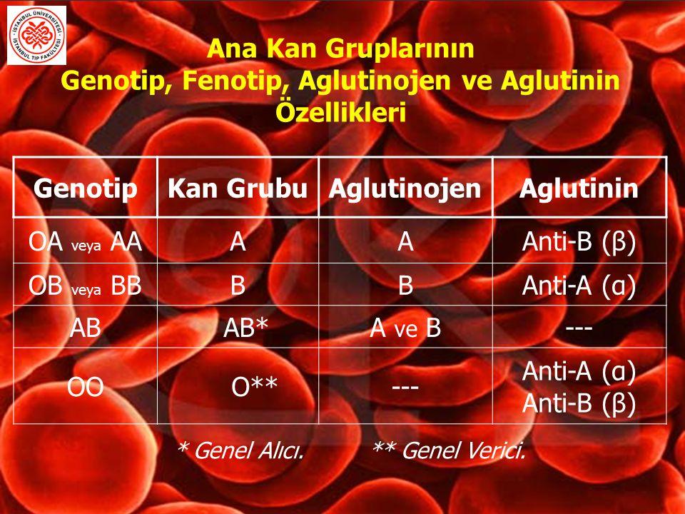 Ana Kan Gruplarının Genotip, Fenotip, Aglutinojen ve Aglutinin Özellikleri