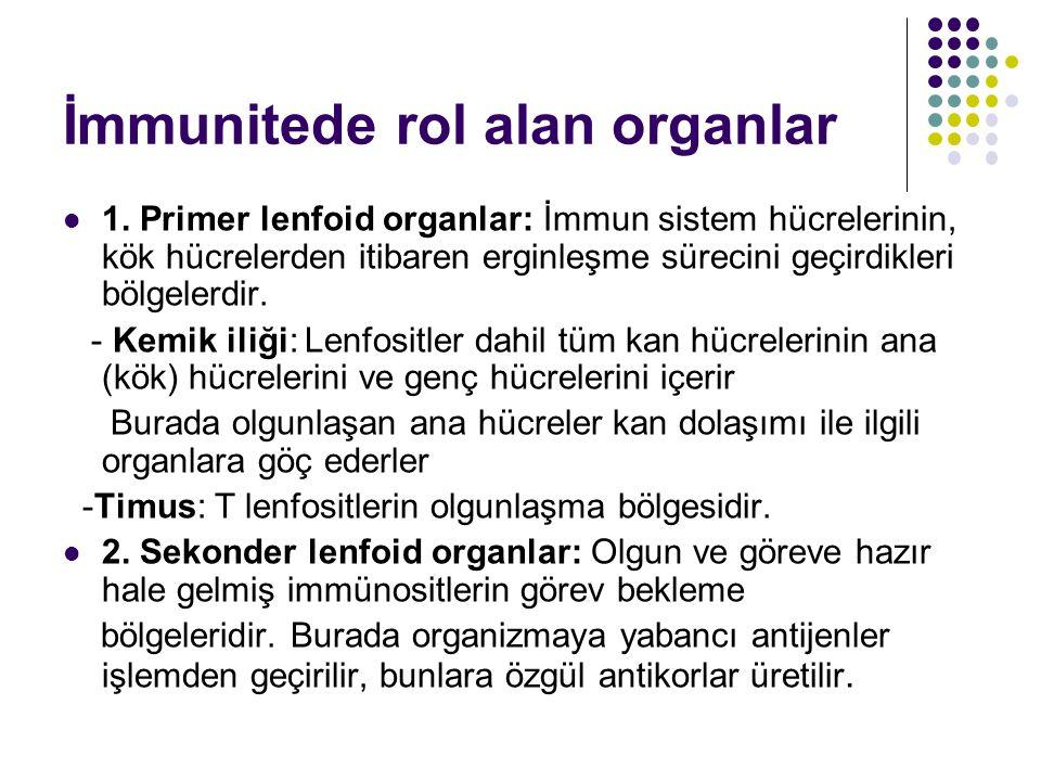 İmmunitede rol alan organlar