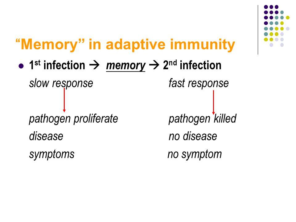 Memory in adaptive immunity