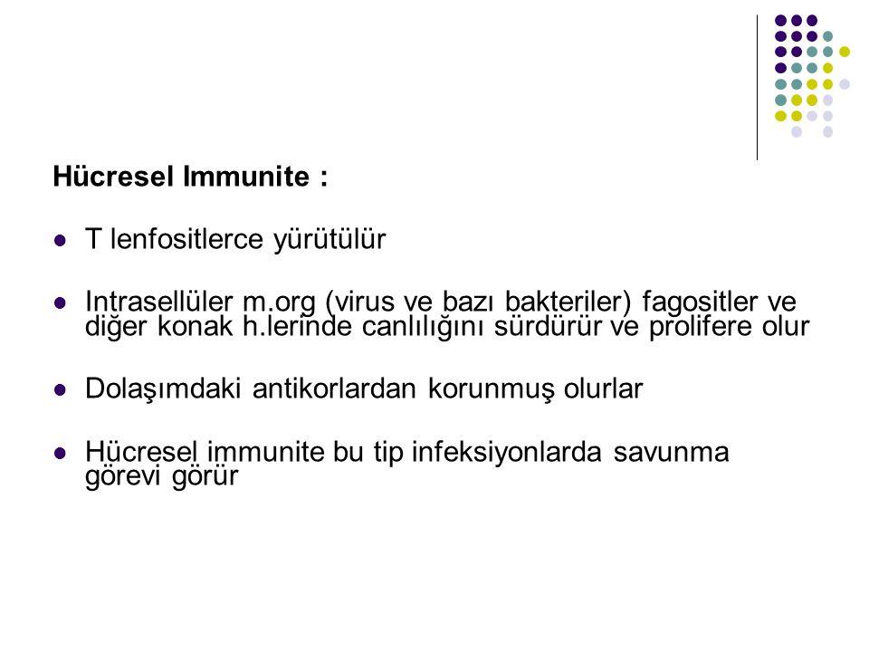Hücresel Immunite : T lenfositlerce yürütülür.