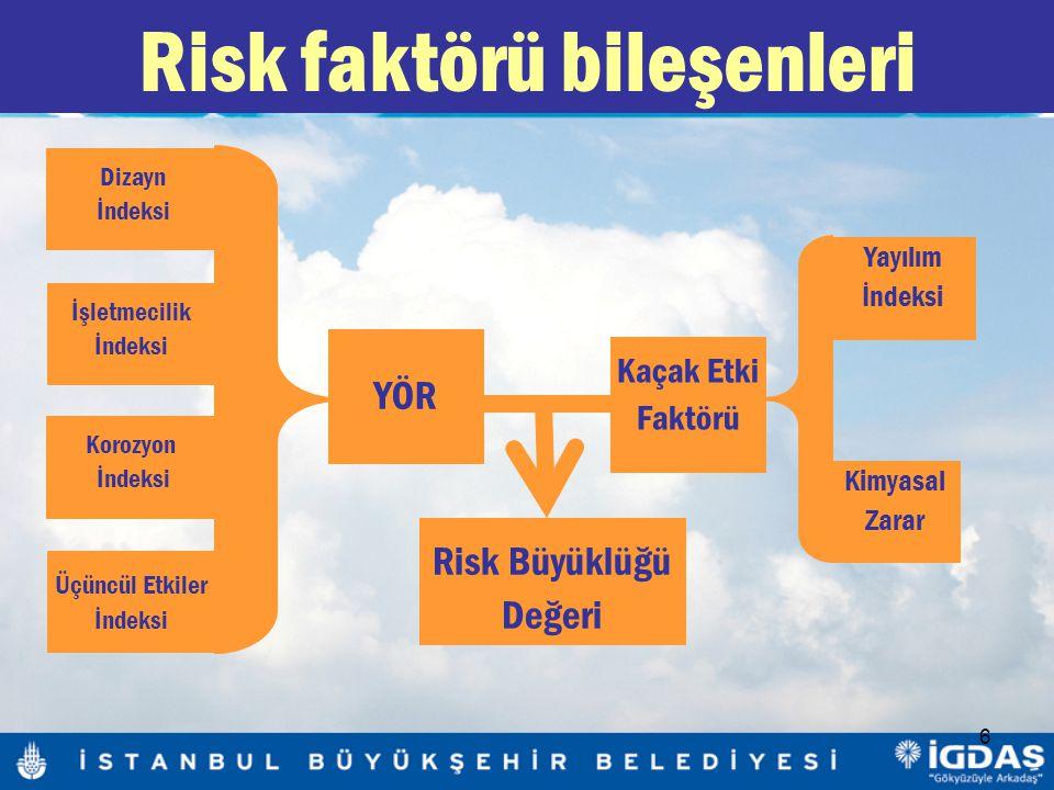 Risk faktörü bileşenleri