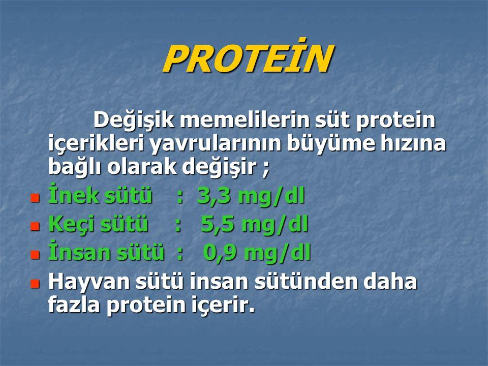 PROTEİN Değişik memelilerin süt protein içerikleri yavrularının büyüme hızına bağlı olarak değişir ;