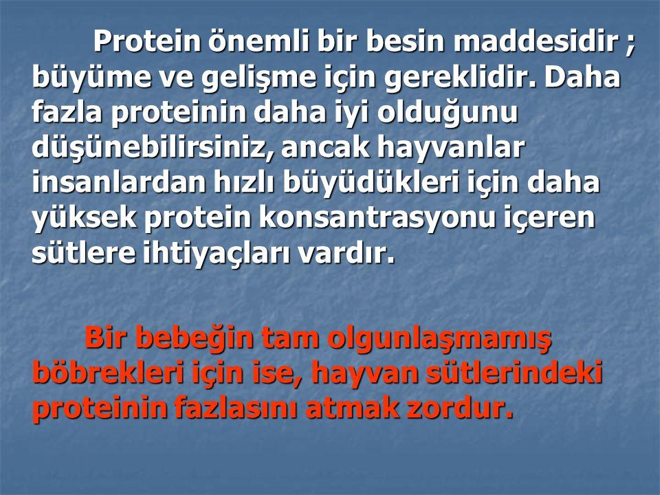 Protein önemli bir besin maddesidir ; büyüme ve gelişme için gereklidir. Daha fazla proteinin daha iyi olduğunu düşünebilirsiniz, ancak hayvanlar insanlardan hızlı büyüdükleri için daha yüksek protein konsantrasyonu içeren sütlere ihtiyaçları vardır.
