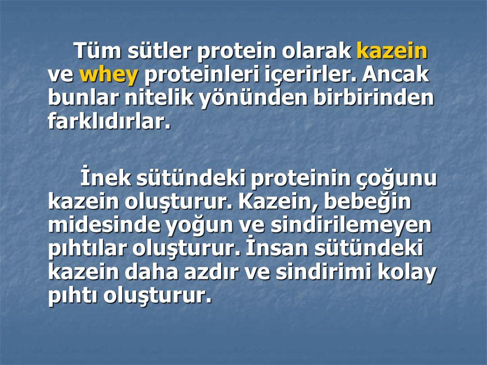 Tüm sütler protein olarak kazein ve whey proteinleri içerirler