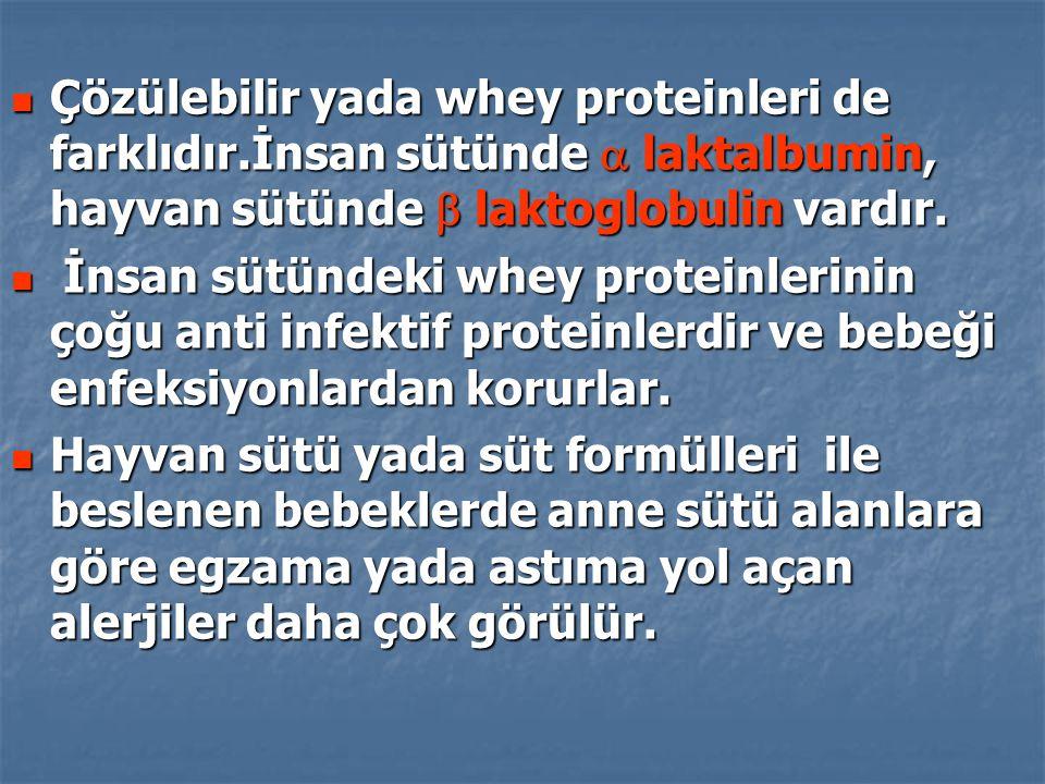 Çözülebilir yada whey proteinleri de farklıdır