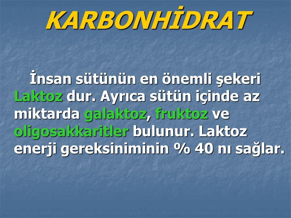 KARBONHİDRAT