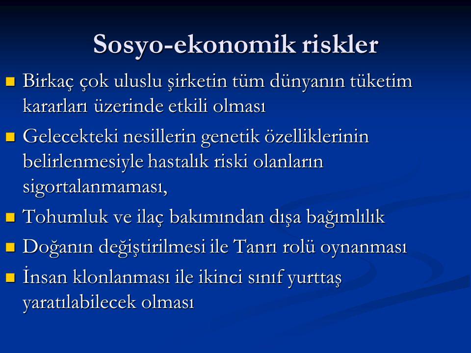 Sosyo-ekonomik riskler