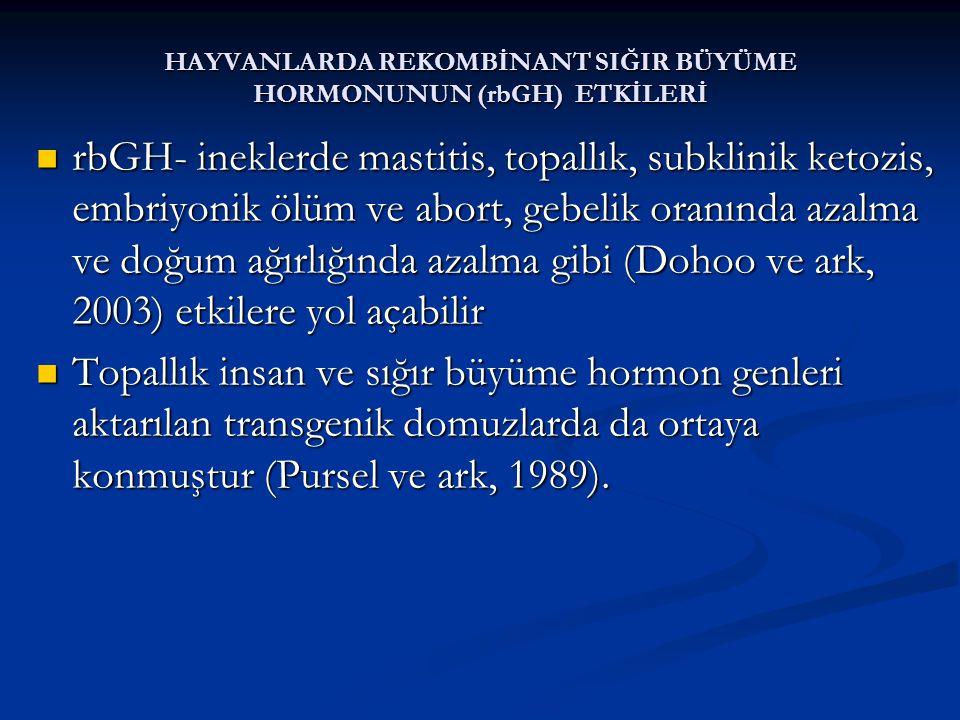 HAYVANLARDA REKOMBİNANT SIĞIR BÜYÜME HORMONUNUN (rbGH) ETKİLERİ