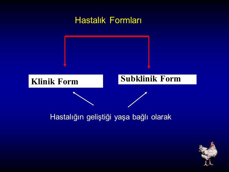Hastalık Formları Klinik Form Subklinik Form