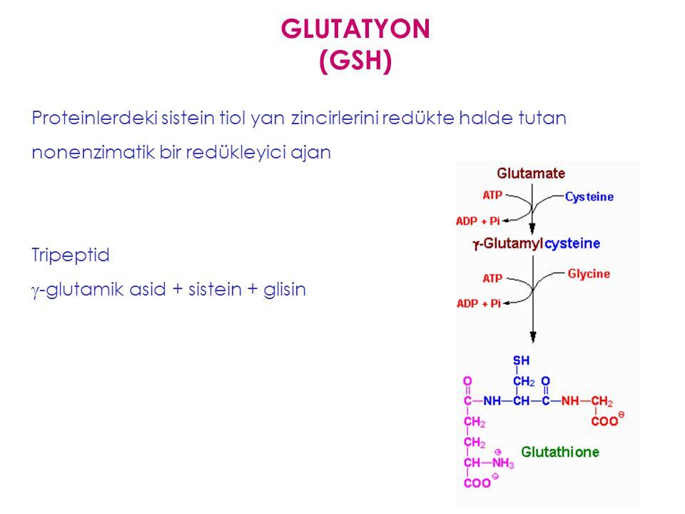 GLUTATYON (GSH) Proteinlerdeki sistein tiol yan zincirlerini redükte halde tutan nonenzimatik bir redükleyici ajan.