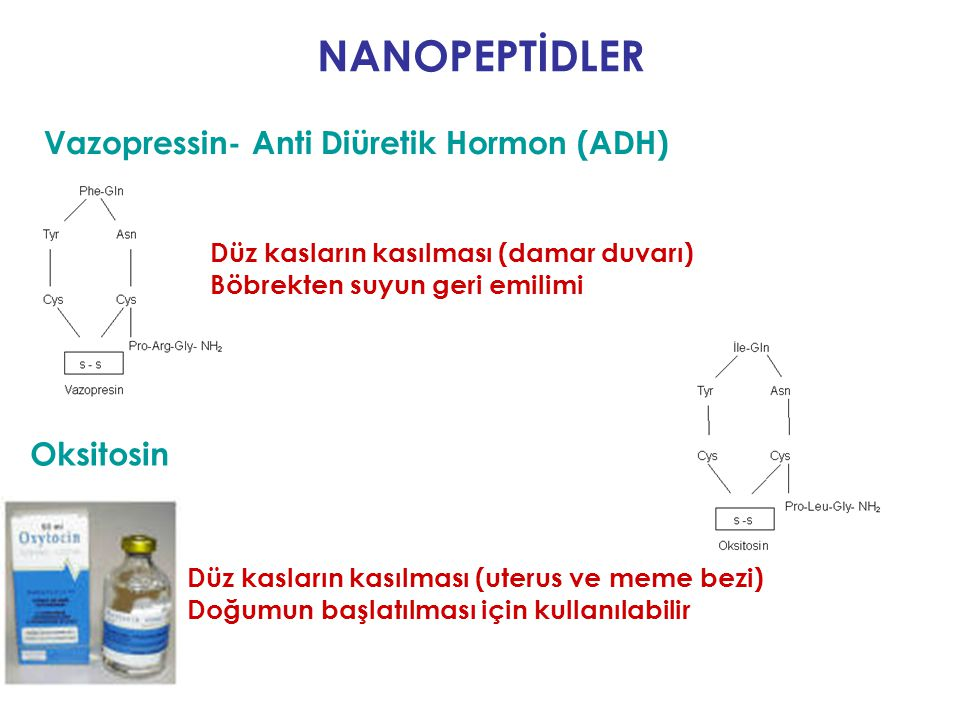 NANOPEPTİDLER Vazopressin- Anti Diüretik Hormon (ADH) Oksitosin