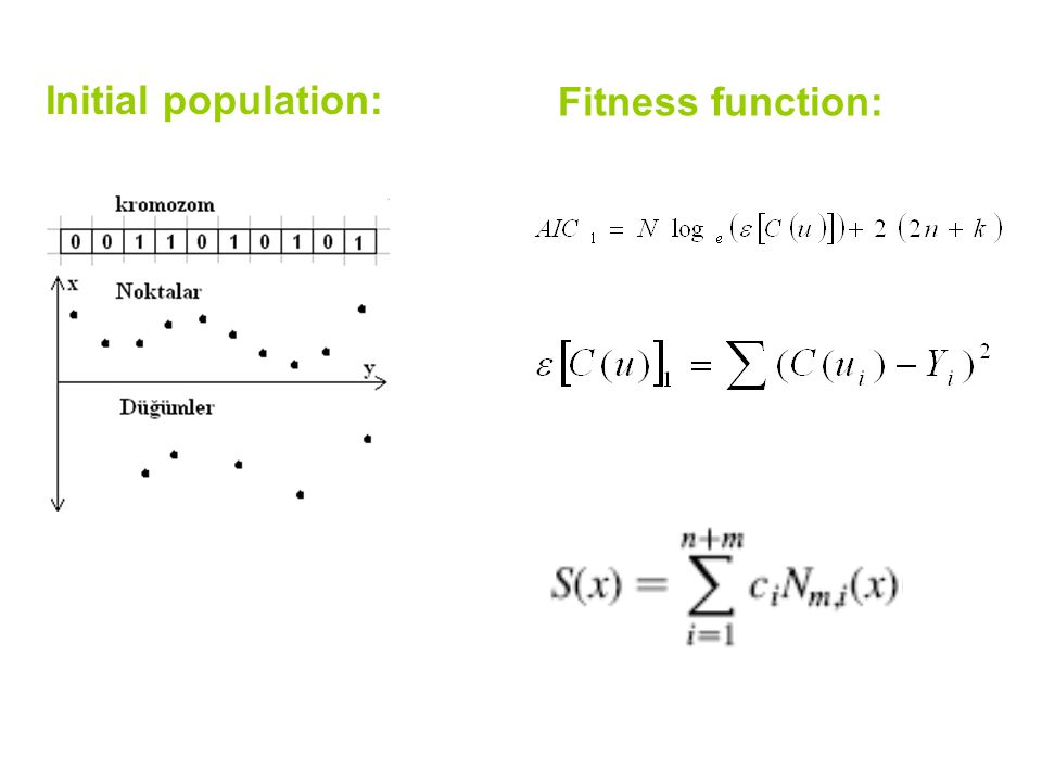 Initial population: Fitness function: