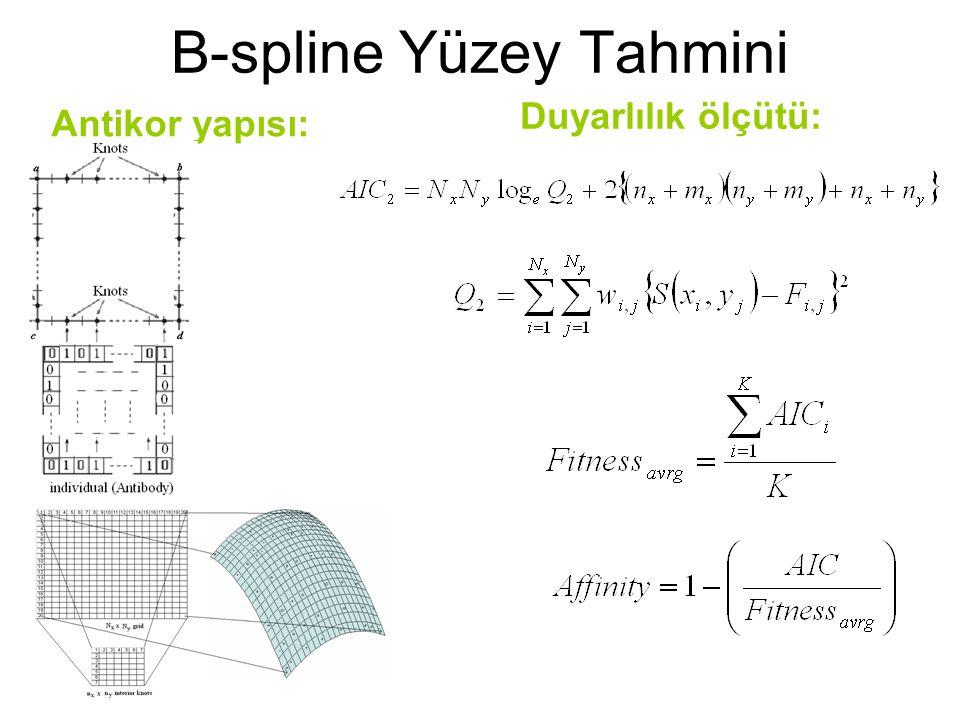 B-spline Yüzey Tahmini