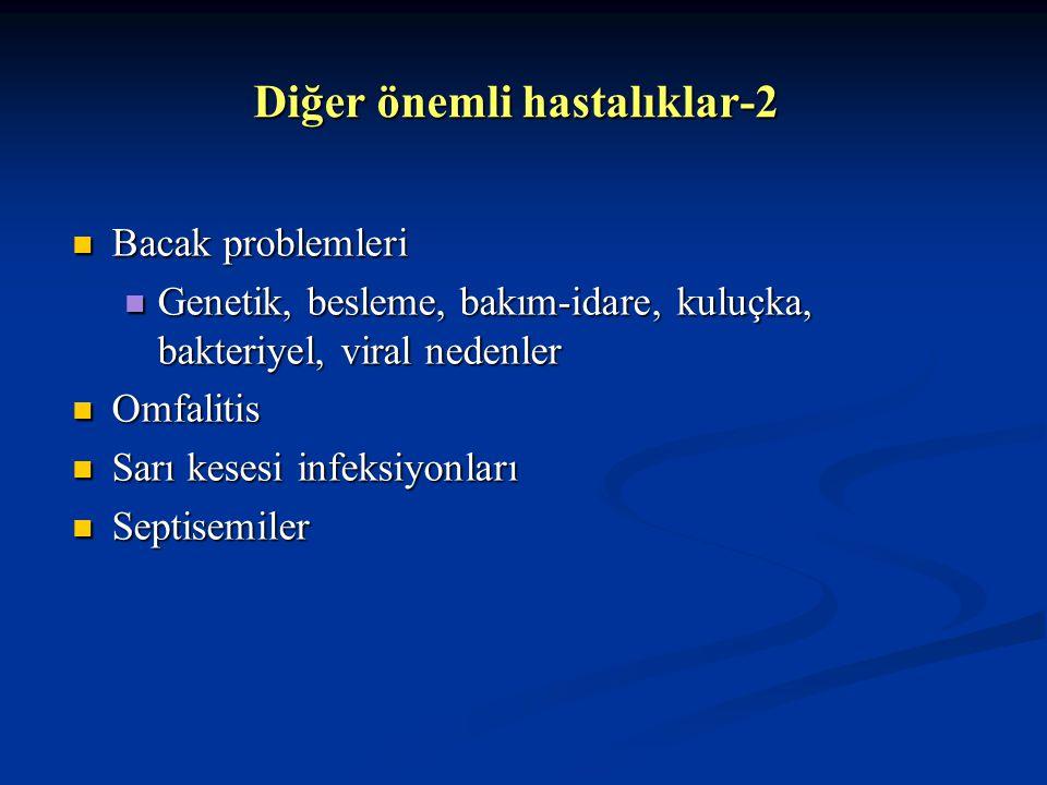 Diğer önemli hastalıklar-2