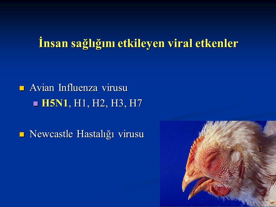 İnsan sağlığını etkileyen viral etkenler