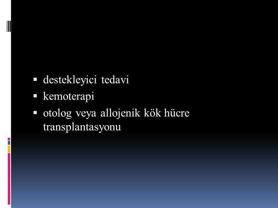 destekleyici tedavi kemoterapi otolog veya allojenik kök hücre transplantasyonu