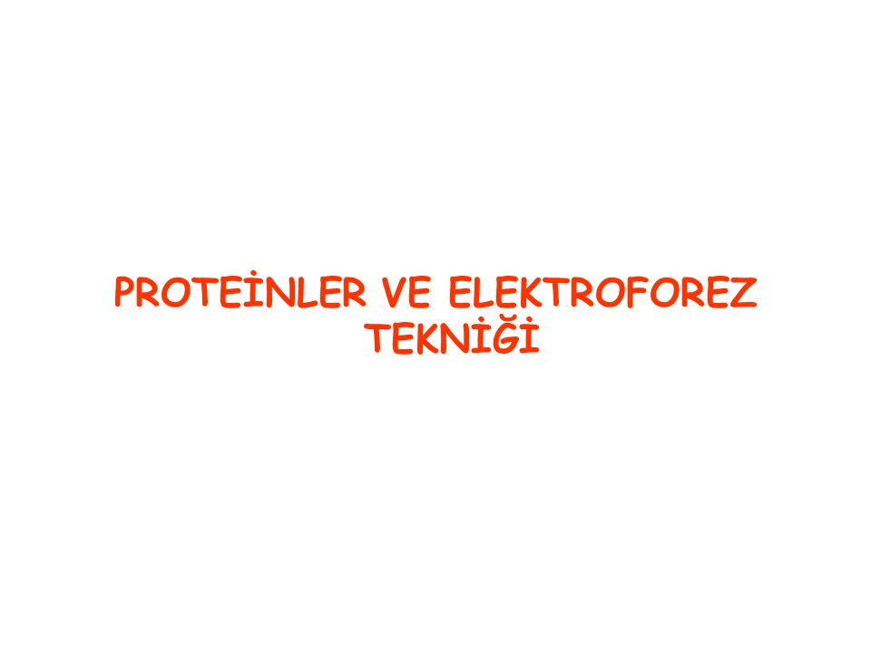 PROTEİNLER VE ELEKTROFOREZ TEKNİĞİ