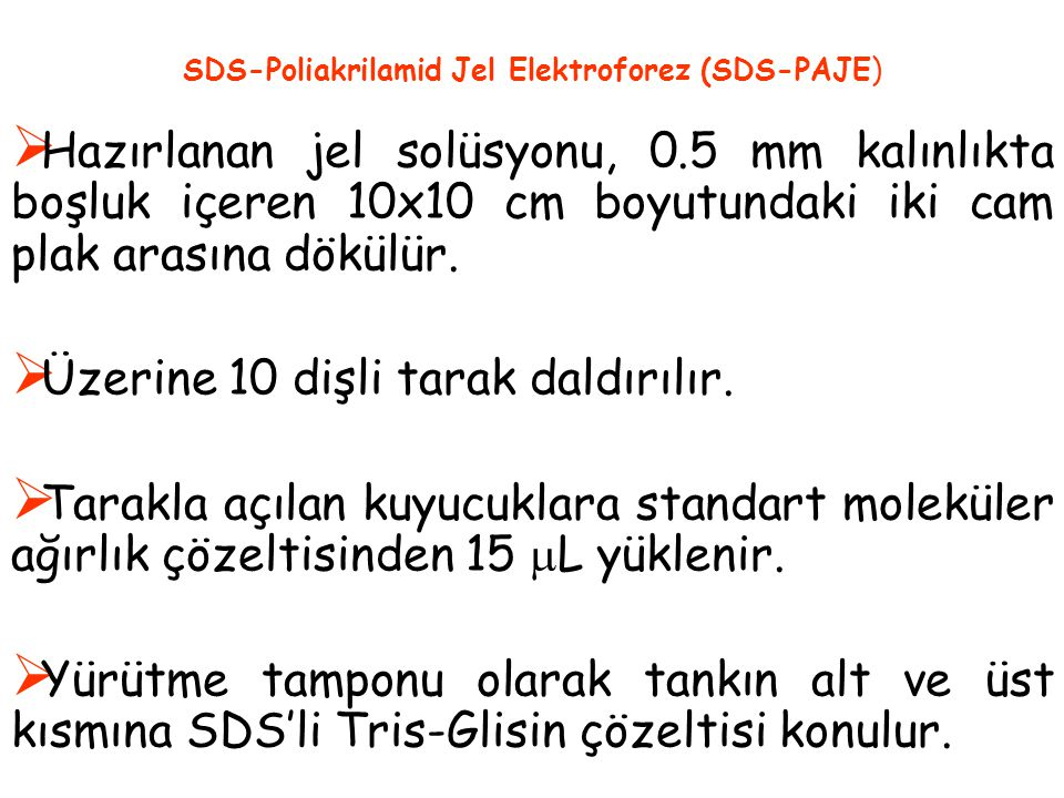 SDS-Poliakrilamid Jel Elektroforez (SDS-PAJE)