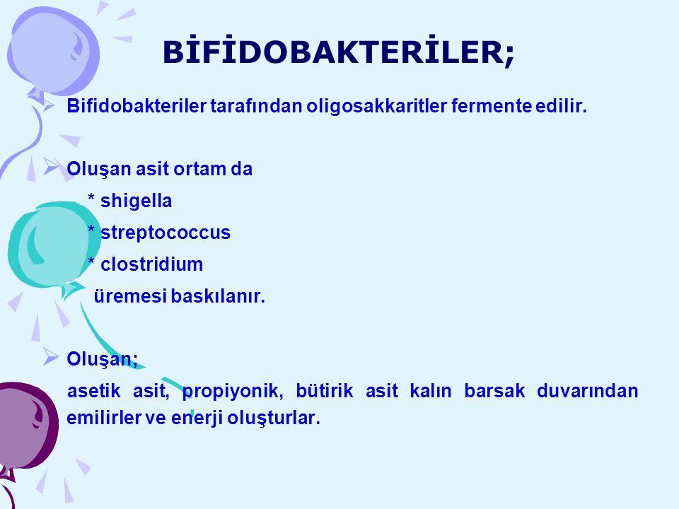 BİFİDOBAKTERİLER; Bifidobakteriler tarafından oligosakkaritler fermente edilir. Oluşan asit ortam da.