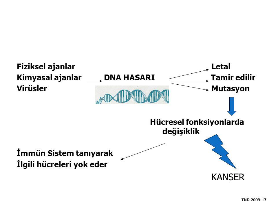 KANSER Fiziksel ajanlar Letal Kimyasal ajanlar DNA HASARI Tamir edilir