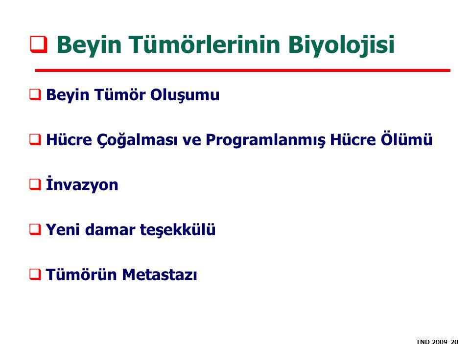 Beyin Tümörlerinin Biyolojisi