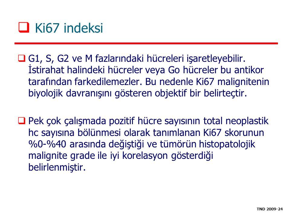 Ki67 indeksi