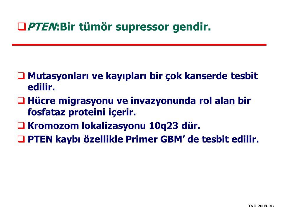 PTEN:Bir tümör supressor gendir.