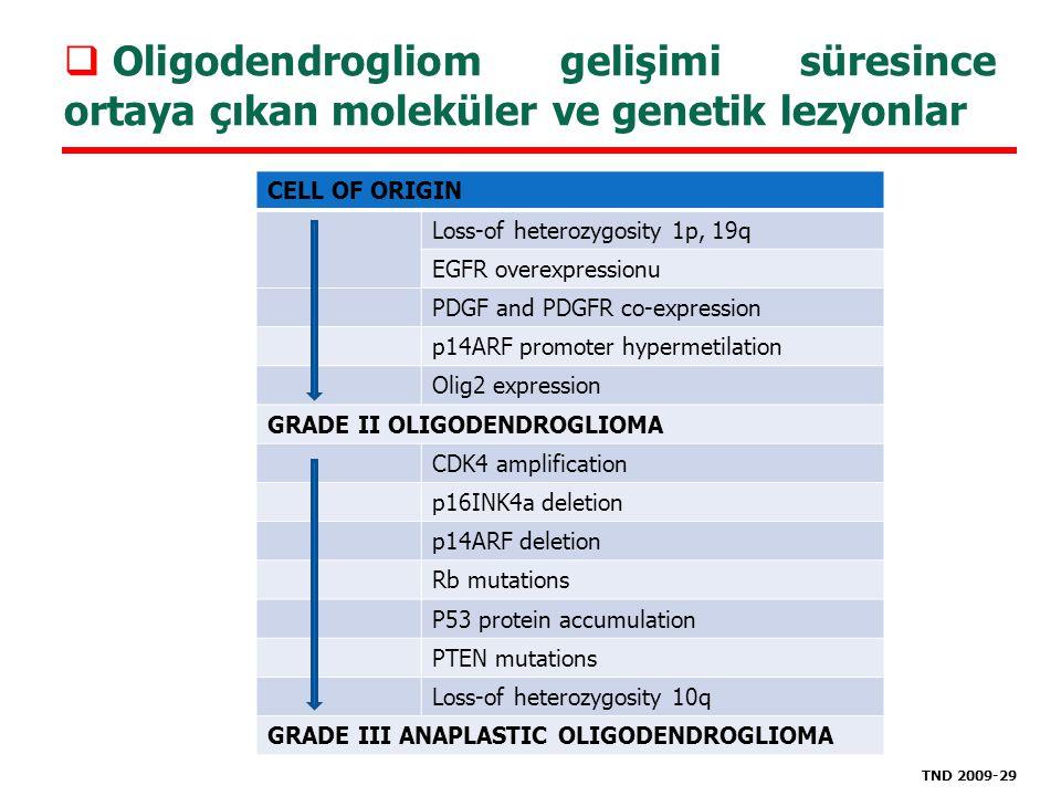 Oligodendrogliom gelişimi süresince ortaya çıkan moleküler ve genetik lezyonlar