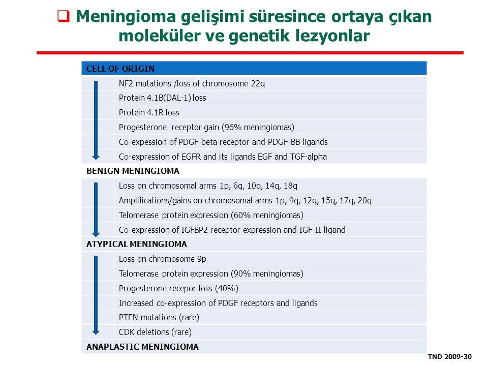 Meningioma gelişimi süresince ortaya çıkan moleküler ve genetik lezyonlar