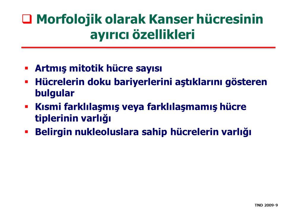 Morfolojik olarak Kanser hücresinin ayırıcı özellikleri