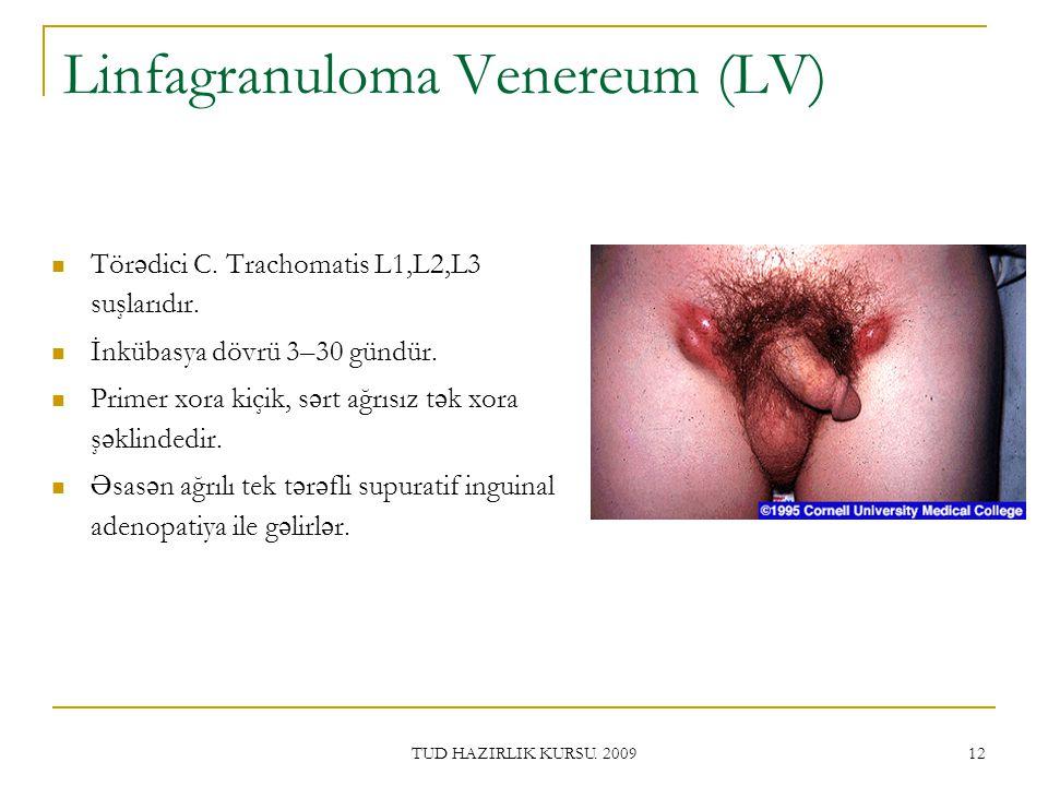Linfagranuloma Venereum (LV)