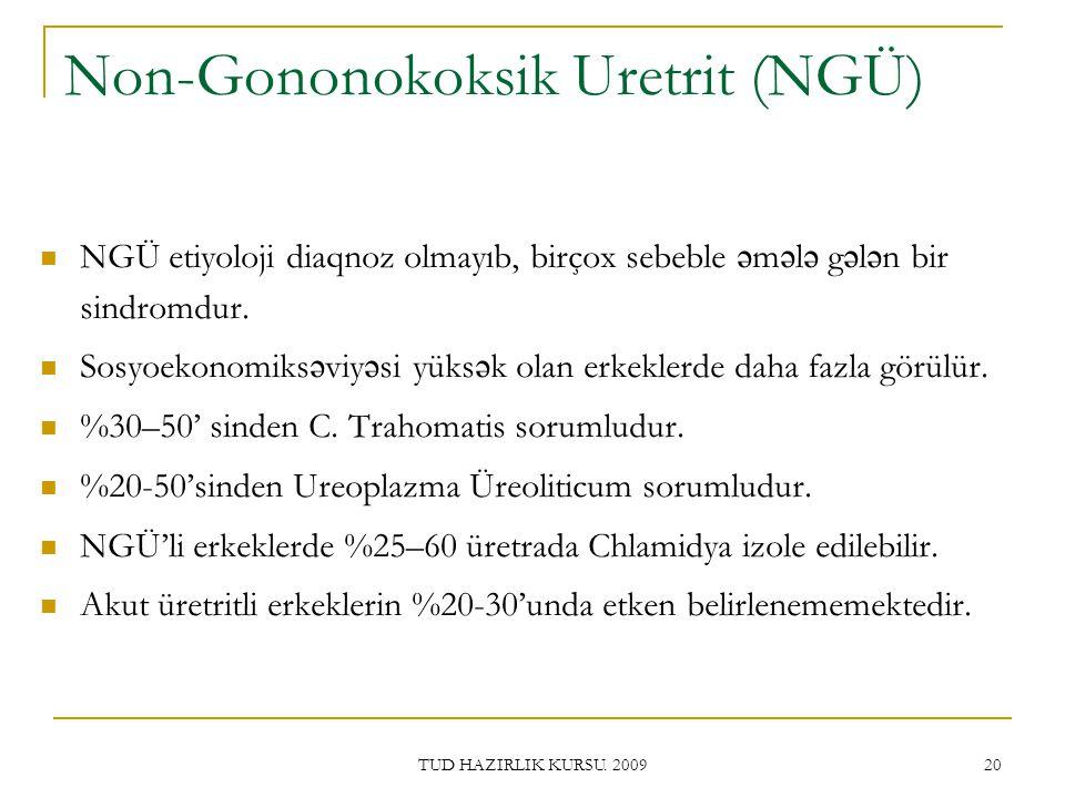 Non-Gononokoksik Uretrit (NGÜ)