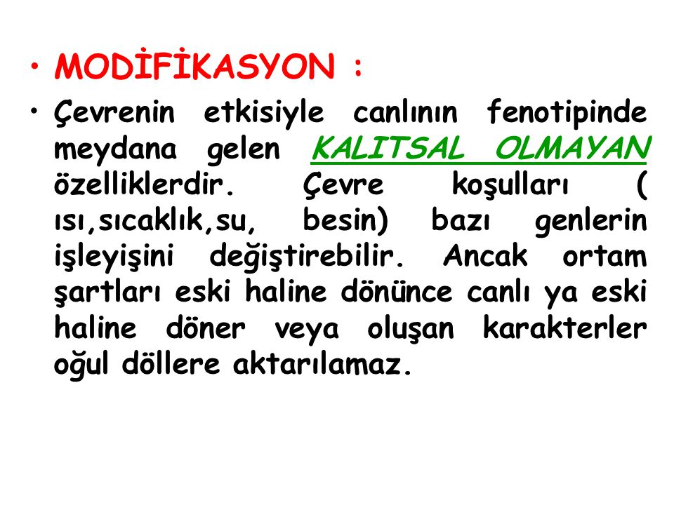 MODİFİKASYON :