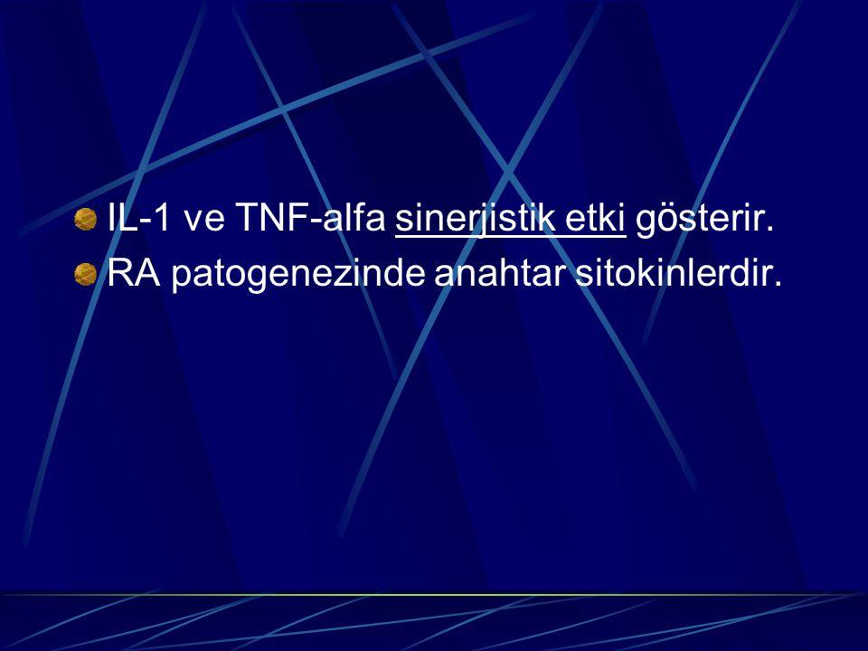 IL-1 ve TNF-alfa sinerjistik etki gösterir.