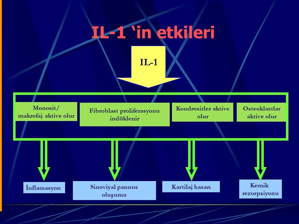 IL-1 'in etkileri IL-1 Monosit/ makrofaj aktive olur