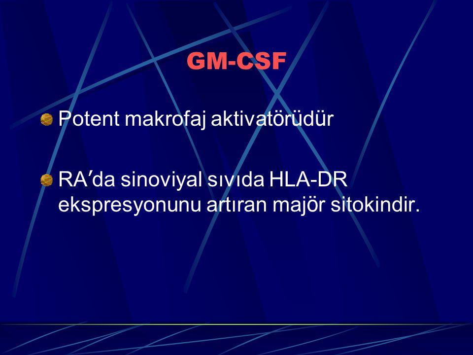 GM-CSF Potent makrofaj aktivatörüdür