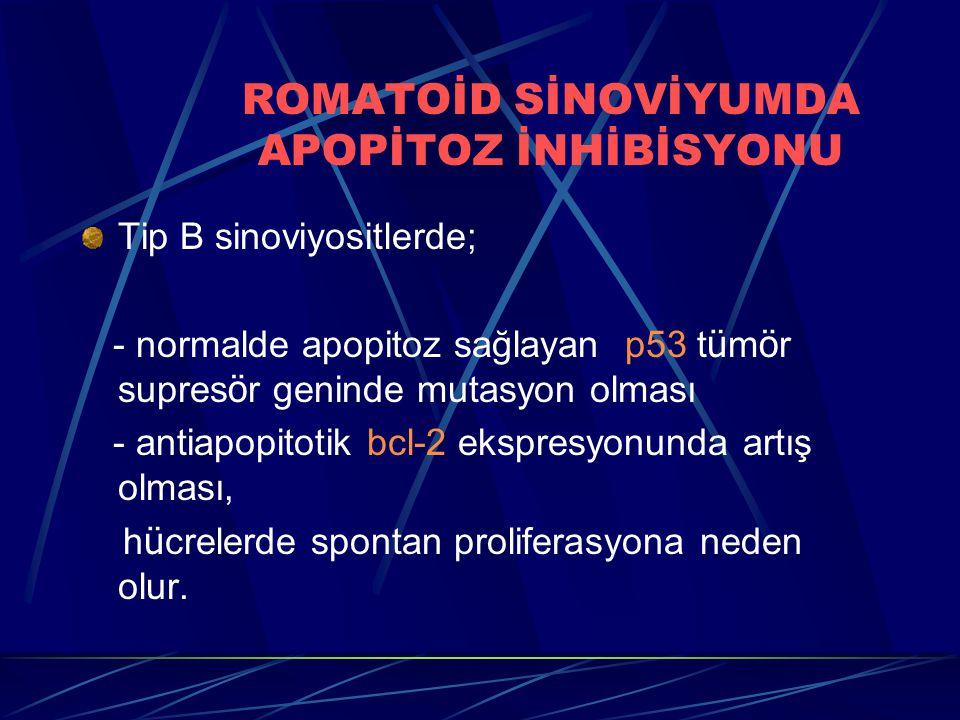 ROMATOİD SİNOVİYUMDA APOPİTOZ İNHİBİSYONU