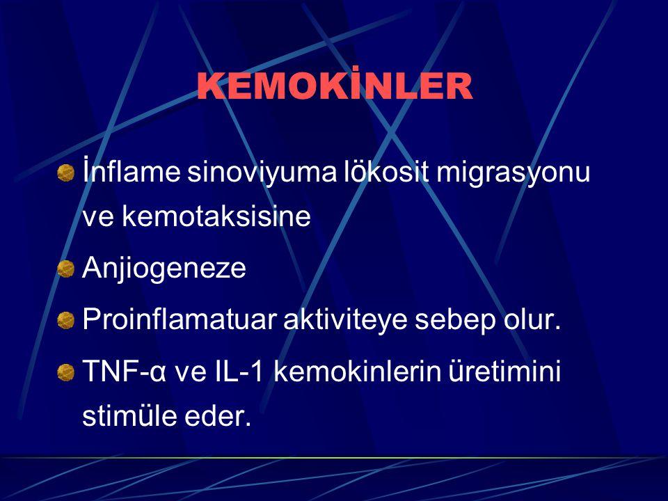 KEMOKİNLER İnflame sinoviyuma lökosit migrasyonu ve kemotaksisine