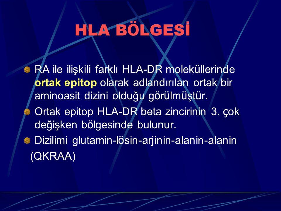 HLA BÖLGESİ RA ile ilişkili farklı HLA-DR moleküllerinde ortak epitop olarak adlandırılan ortak bir aminoasit dizini olduğu görülmüştür.