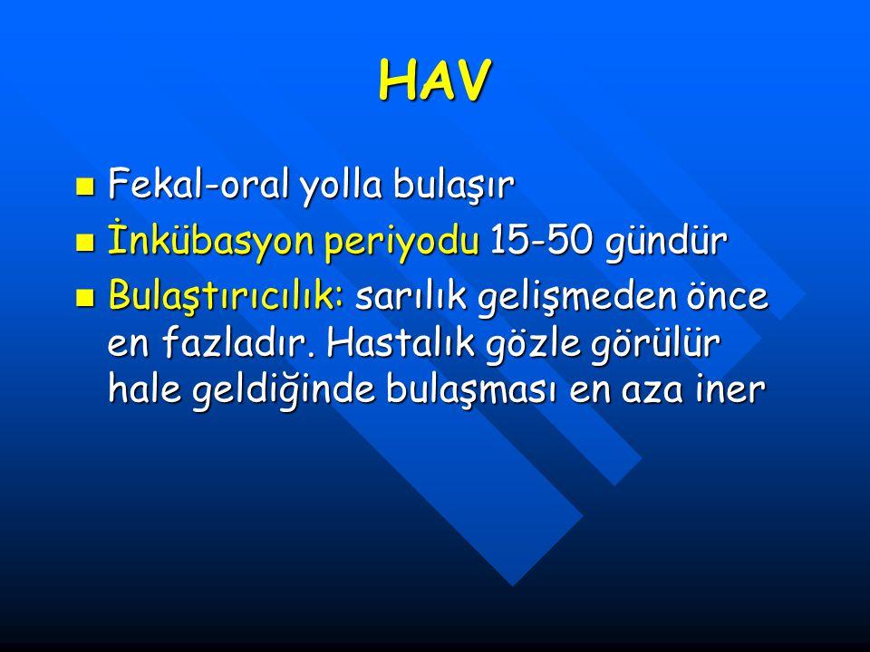 HAV Fekal-oral yolla bulaşır İnkübasyon periyodu 15-50 gündür