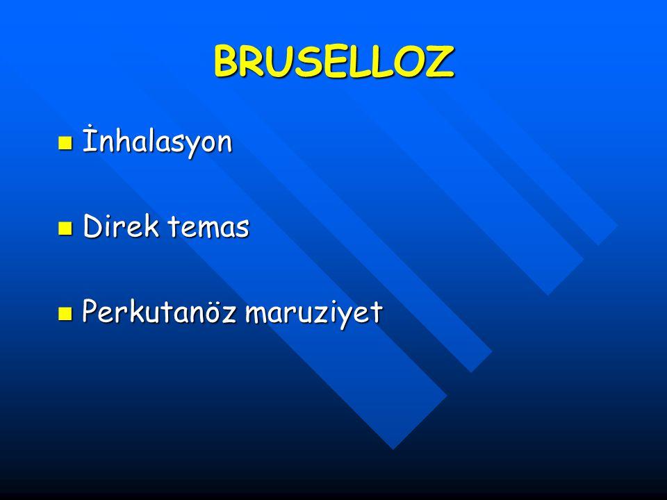 BRUSELLOZ İnhalasyon Direk temas Perkutanöz maruziyet