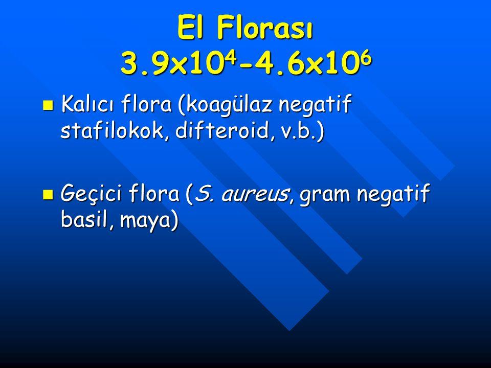 El Florası 3.9x104-4.6x106 Kalıcı flora (koagülaz negatif stafilokok, difteroid, v.b.) Geçici flora (S.