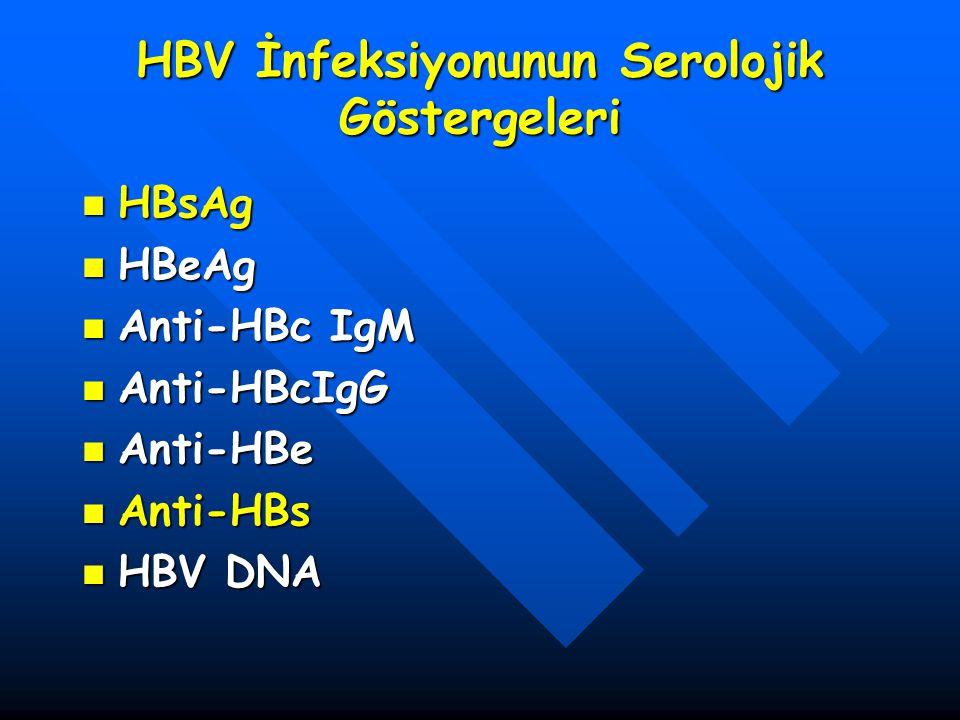 HBV İnfeksiyonunun Serolojik Göstergeleri