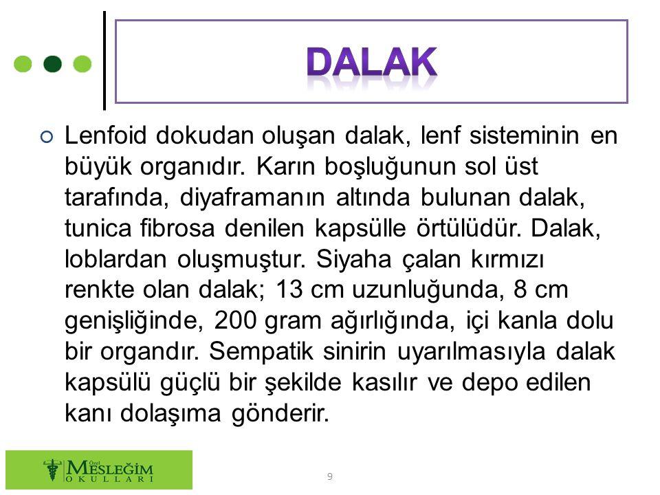 Dalak