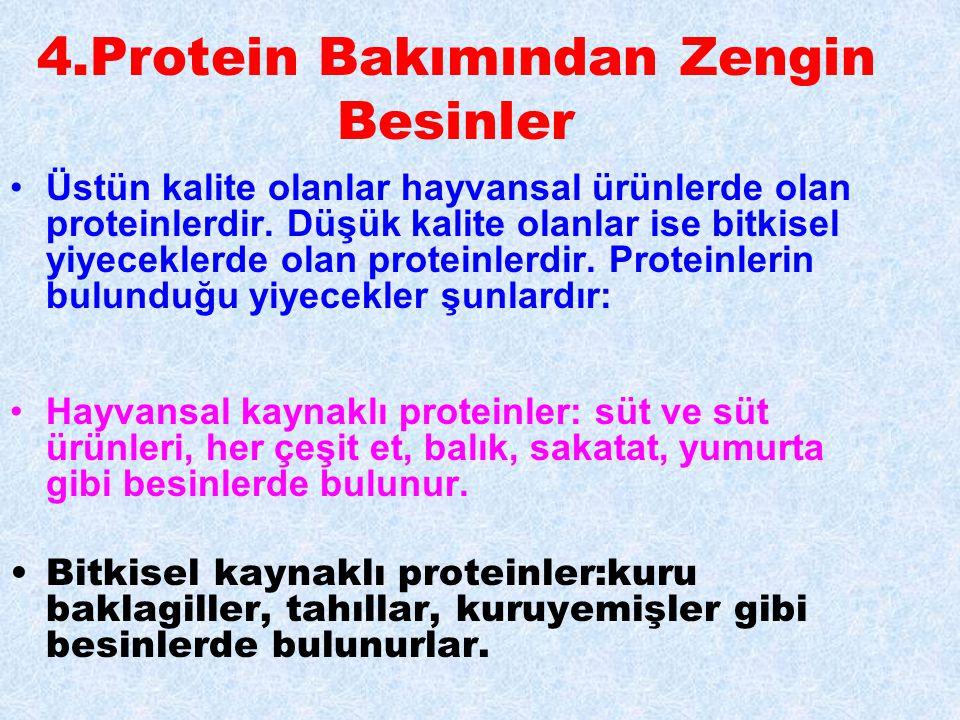 4.Protein Bakımından Zengin Besinler