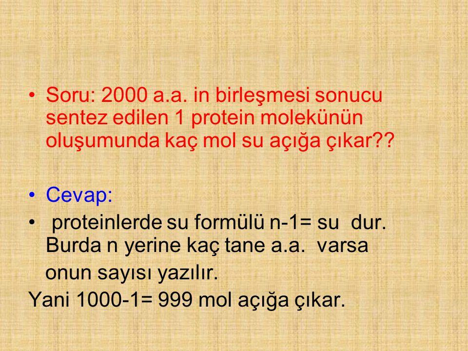 Soru: 2000 a.a. in birleşmesi sonucu sentez edilen 1 protein molekünün oluşumunda kaç mol su açığa çıkar