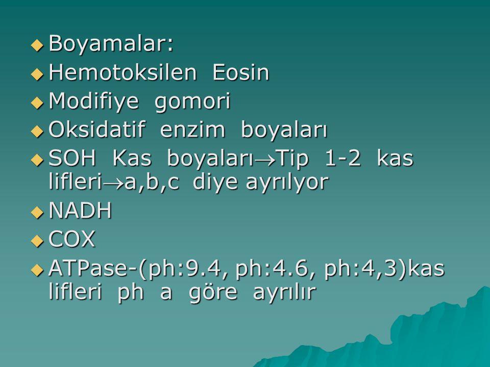Boyamalar: Hemotoksilen Eosin. Modifiye gomori. Oksidatif enzim boyaları. SOH Kas boyalarıTip 1-2 kas lifleria,b,c diye ayrılyor.