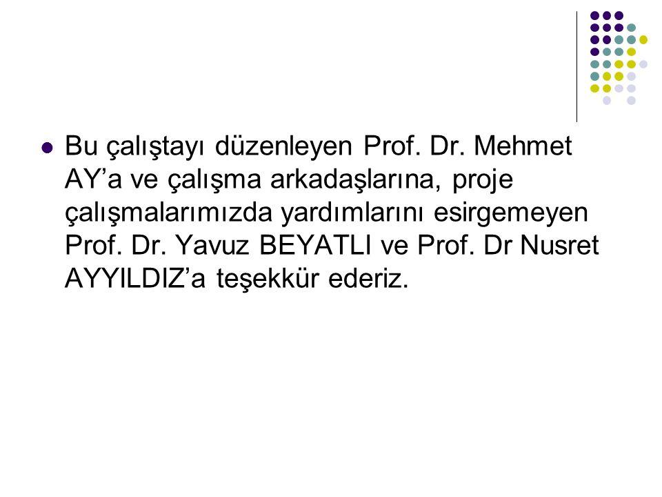 Bu çalıştayı düzenleyen Prof. Dr
